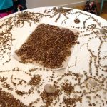 gravel art image in workshop run by facilitator andrew martyn sugars